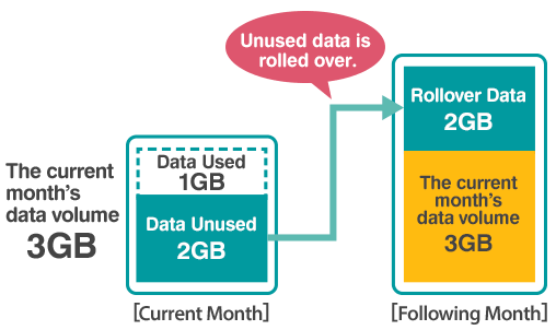 3GB Monthly Data Plan Rollover Example:Unused data will be rolled over for the use for the following month.